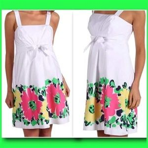 Lilly Pulitzer Avaline Doodle Bug Dress size 4 NWT